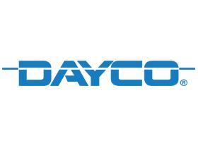Dayco APV2047